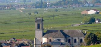 玻玛产区有许多声名显赫的一级葡萄园