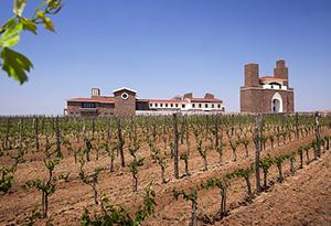 山东红酒产区