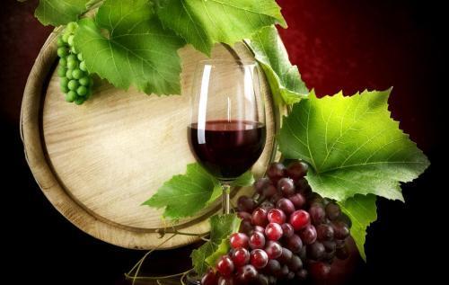 葡萄酒旅游业将通过期待已久的战略计划帮助在之后重新启动