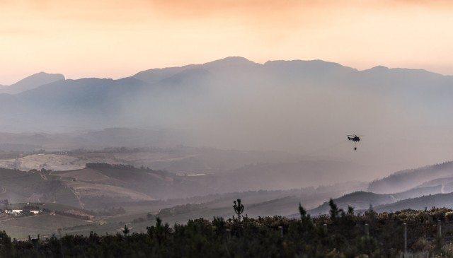 科学家发现检测葡萄受火灾污染程度的方法